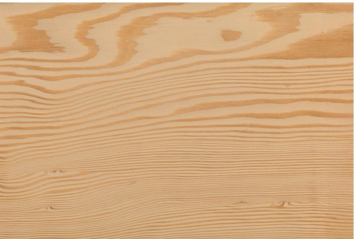 Douglas Fir - DHTimber Hardwood and Softwood Supplier
